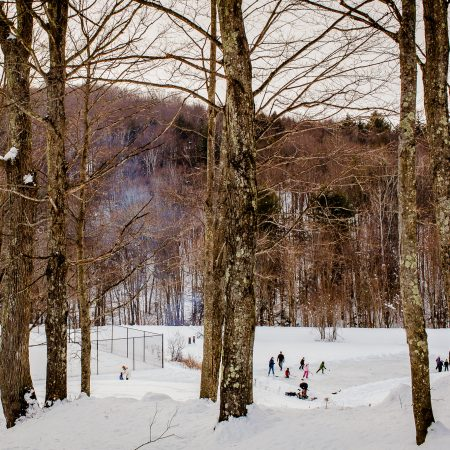 people skating in the woods