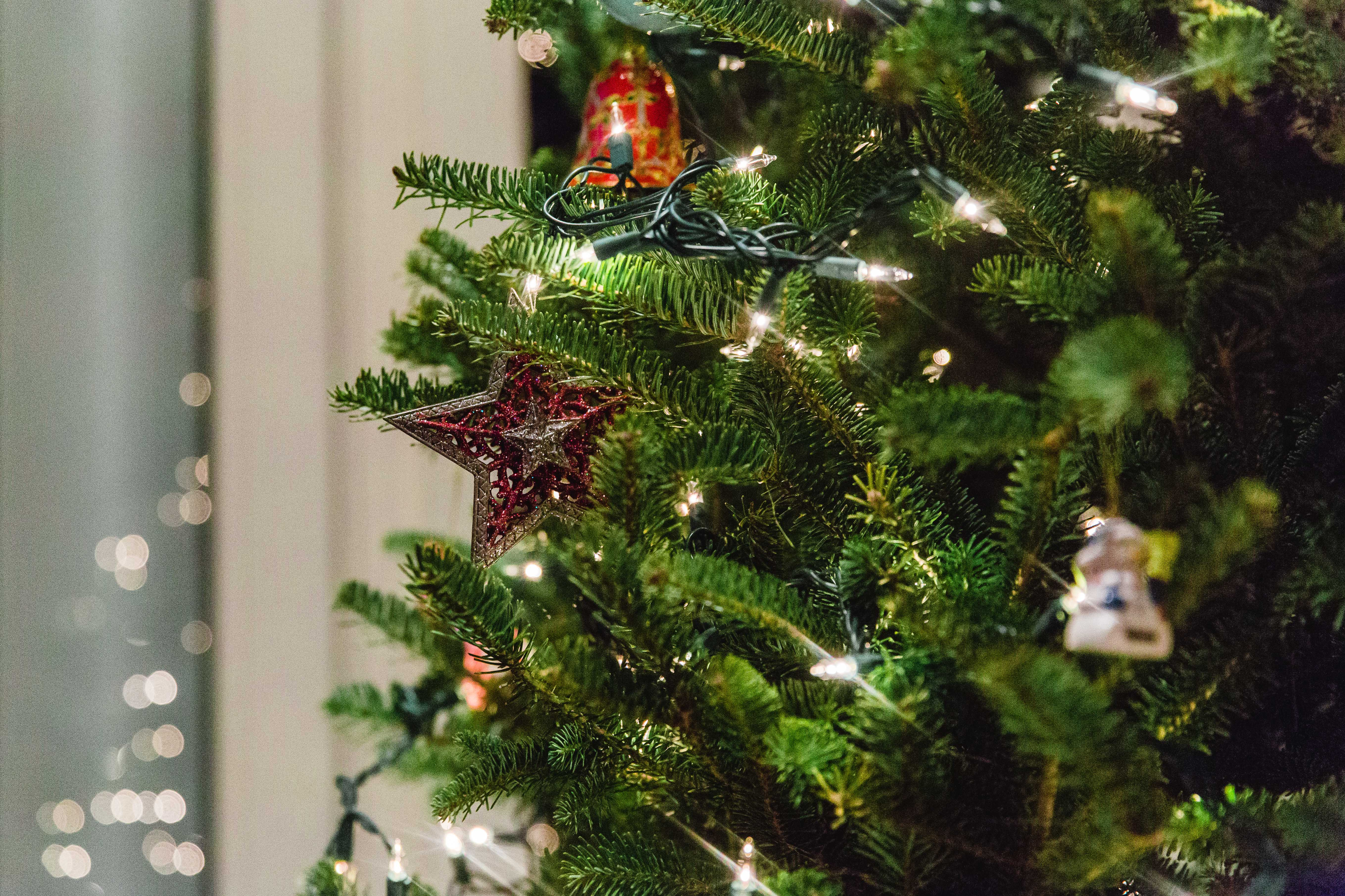close up of red star and white lights on Christmas tree