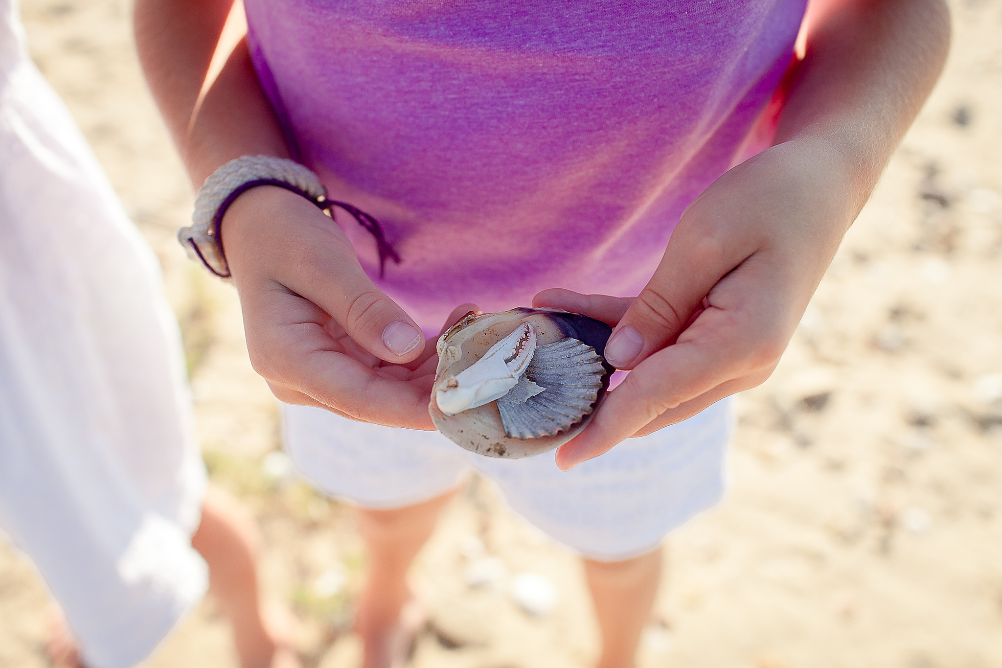 little girl holding seashell with crab claw