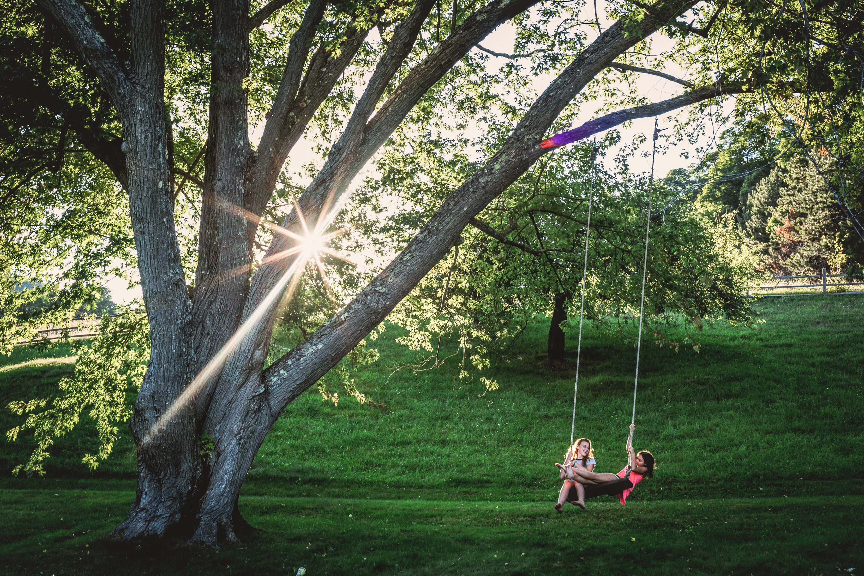 girls swinging on rope swing with sunburst in background