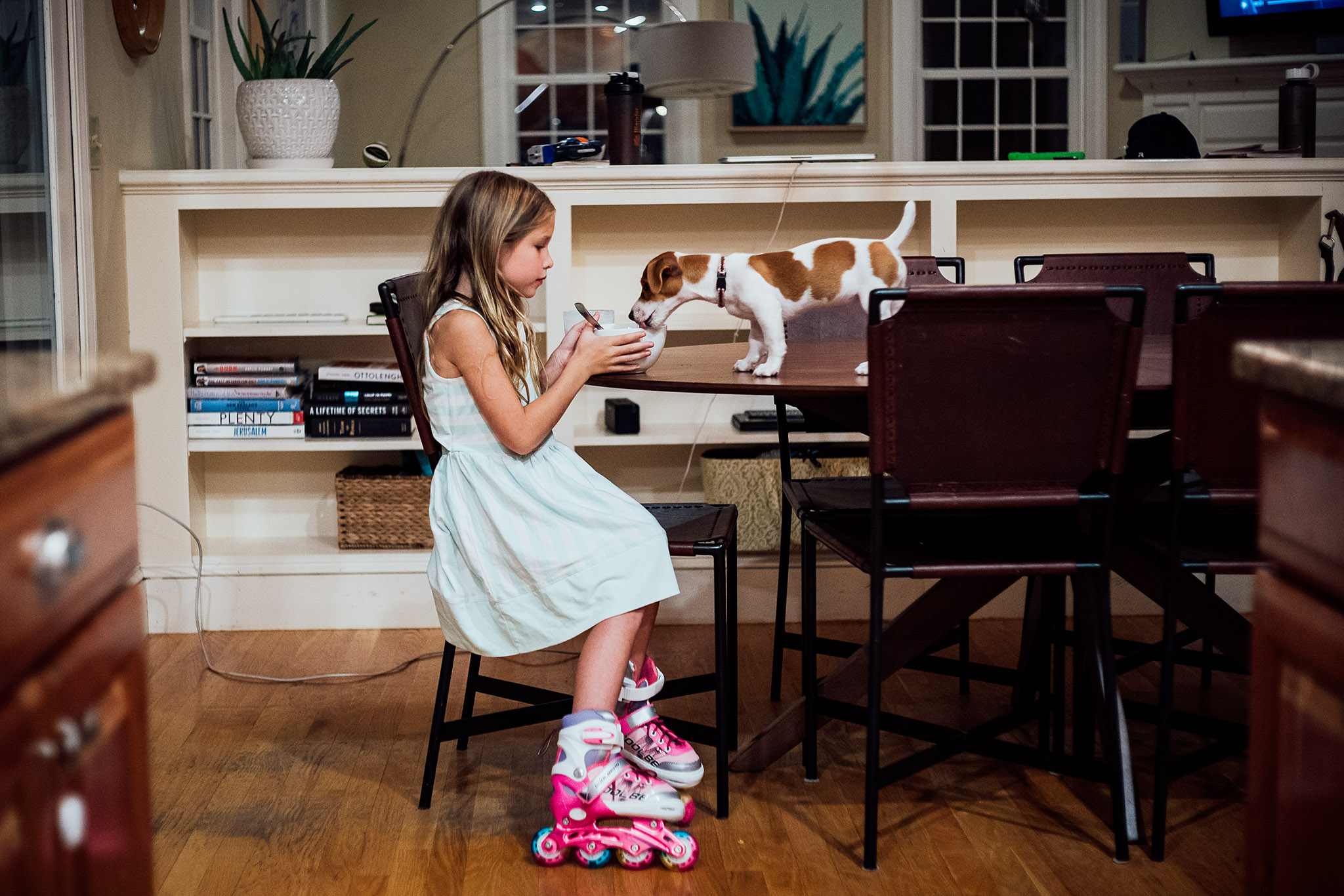 little girl wearing pink rollerblades sitting at the table sharing a bowl of soup with a small dog standing on the table